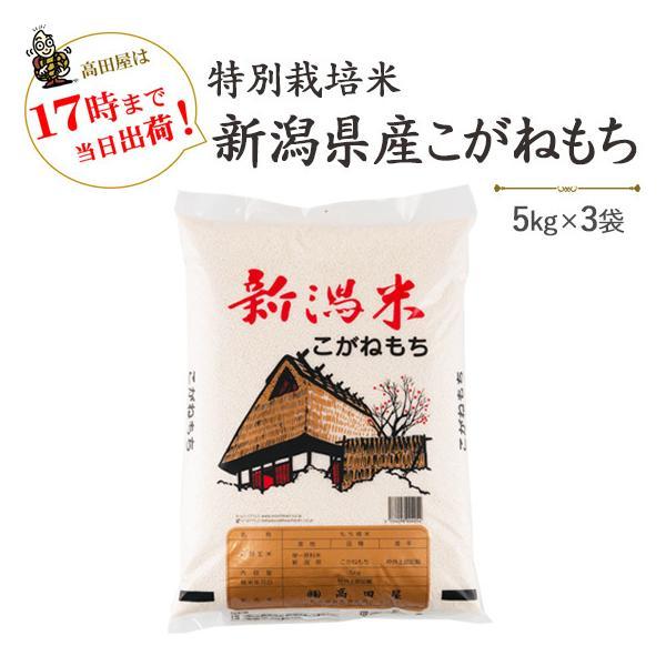 令和3年産 もち米15kg 特別栽培米新潟産こがねもち 5kg×3  送料無料(一部地域を除く)