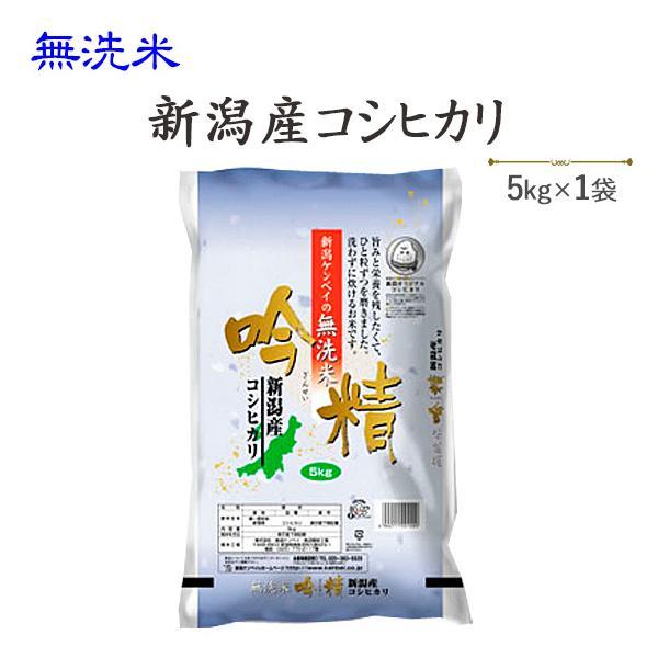 令和3年産 お米 5kg  無洗米 新潟産コシヒカリ5kg 送料無料(一部地域を除く)※発送に2.3日かかる場合があります。