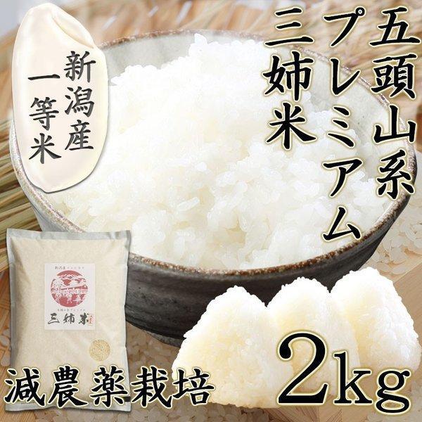 komeyakatagiri_83444933