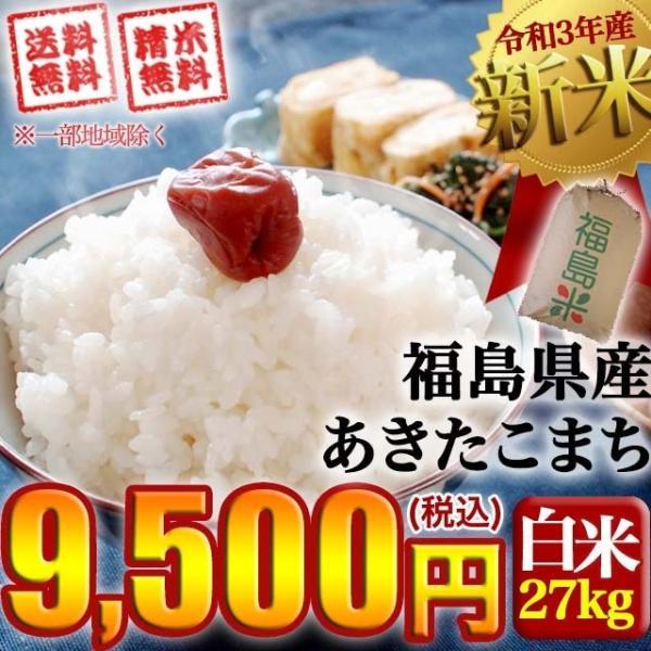 米 お米 令和2年産 福島県中通り産 あきたこまち 玄米:30kg(白米:約27kg) 精米無料 送料無料 ※沖縄県・離島対応不可