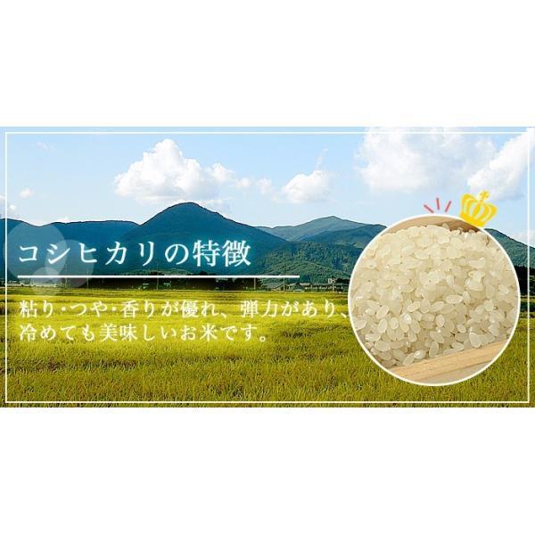 米 お米 平成30年産 福島県中通り産コシヒカリ白米10kg(5kg×2個) 送料無料 ※一部地域を除く komeyamayoshi 02