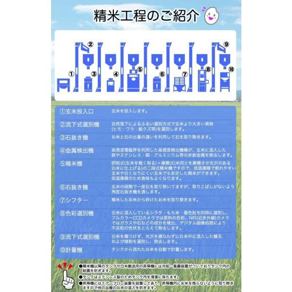 米 お米 平成30年産 福島県中通り産コシヒカリ白米10kg(5kg×2個) 送料無料 ※一部地域を除く komeyamayoshi 06