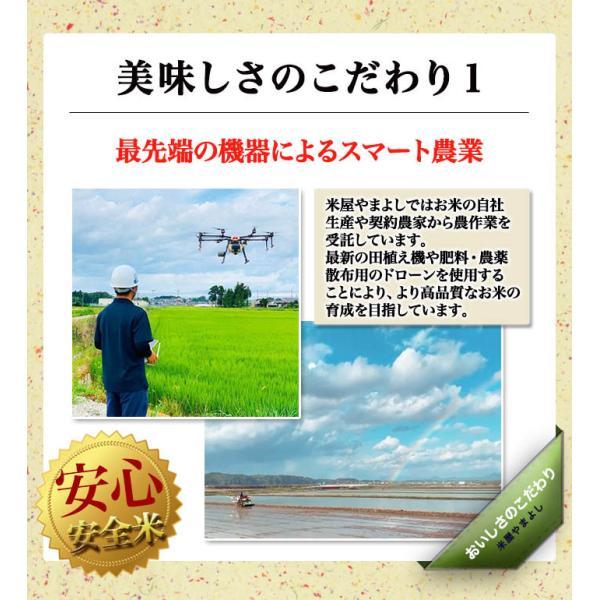 米 お米 令和元年産 福島県中通り産ミルキークイーン白米10kg(5kg×2個)  送料無料  ※一部地域を除く|komeyamayoshi|02