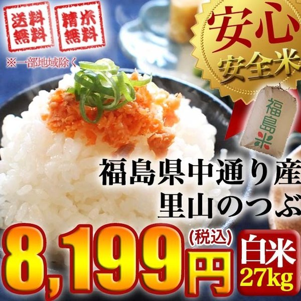 米 お米 令和2年産 福島県中通り産 里山のつぶ 玄米:30kg(白米:約27kg) 精米無料 送料無料 ※沖縄県・離島対応不可