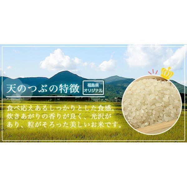 米 お米 平成30年産 福島県中通り産 天のつぶ 白米:10kg(5kg×2個)  送料無料 ※一部地域を除く komeyamayoshi 02