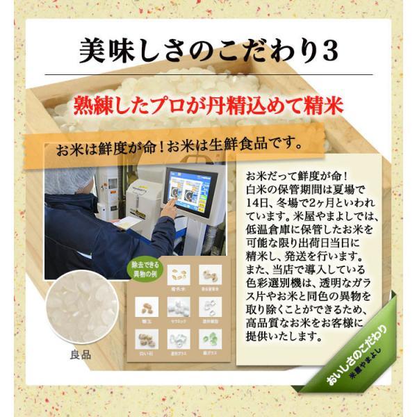 米 お米 令和元年産 福島県中通り産 天のつぶ 白米:10kg(5kg×2個)  送料無料 ※一部地域を除く|komeyamayoshi|05