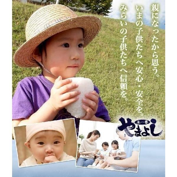 真空パック♪4銘柄食べ比べセット 福島県中通り産 白米8kg(1kg×8個)|komeyamayoshi|03