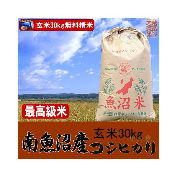 南魚沼産コシヒカリ(玄米)令和2年産 30kg【送料無料(本州のみ)】佐川急便でお届け