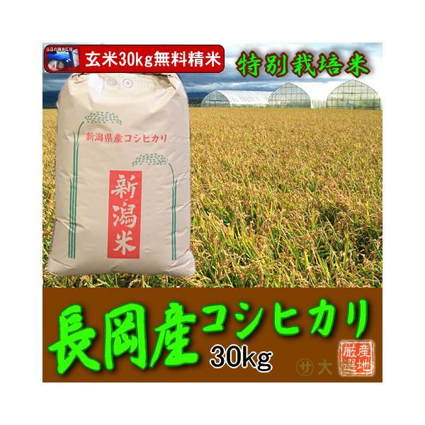新米〔特別栽培米〕 新潟県産コシヒカリ(令和3年産)玄米30kg(長岡地区)【送料無料(本州のみ)】