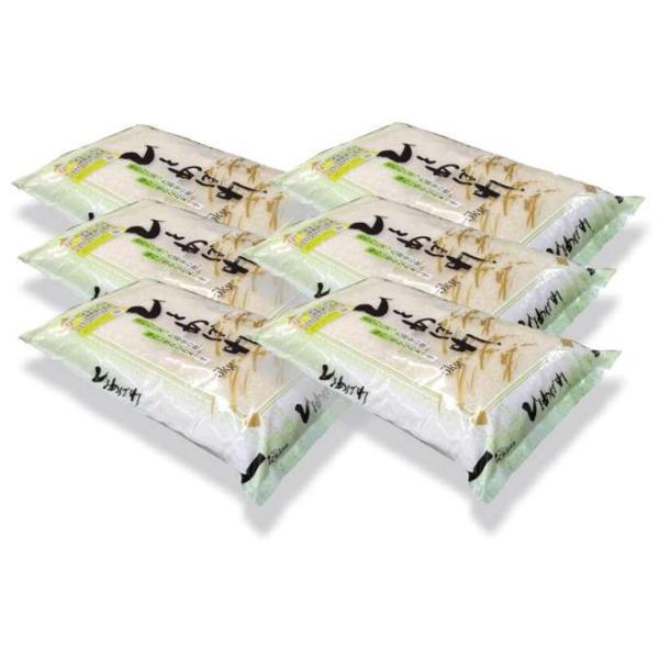 【無洗米】 福島県会津産ひとめぼれ30kg(5kg×6袋) 令和2年産「ふくしまプライド。体感キャンペーン(お米)」