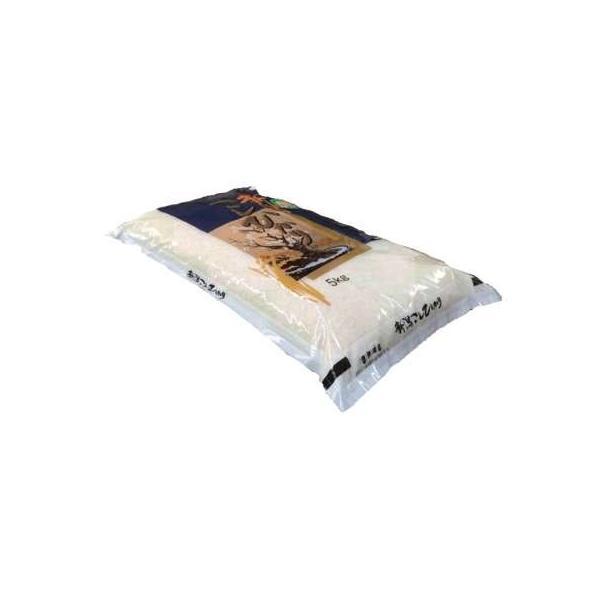 【無洗米】 新潟県産コシヒカリ5kg 令和2年産