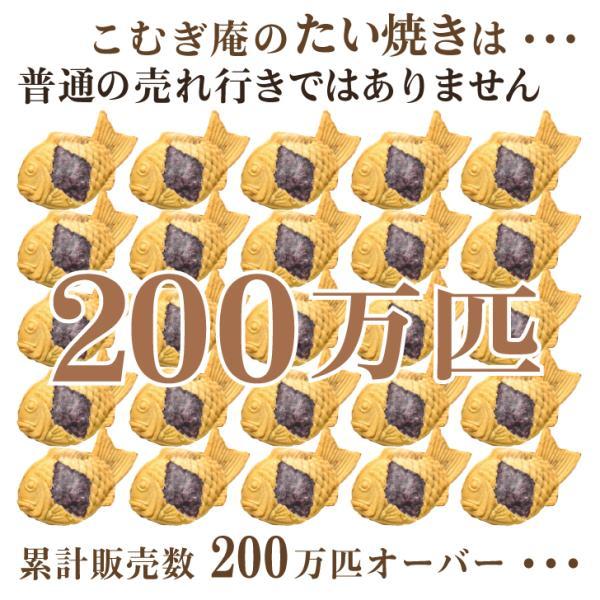 送料無料30個セット 薄皮たい焼き たい焼き たいやき お取り寄せ 宅配たい焼き 和菓子 スイーツ komugian 02