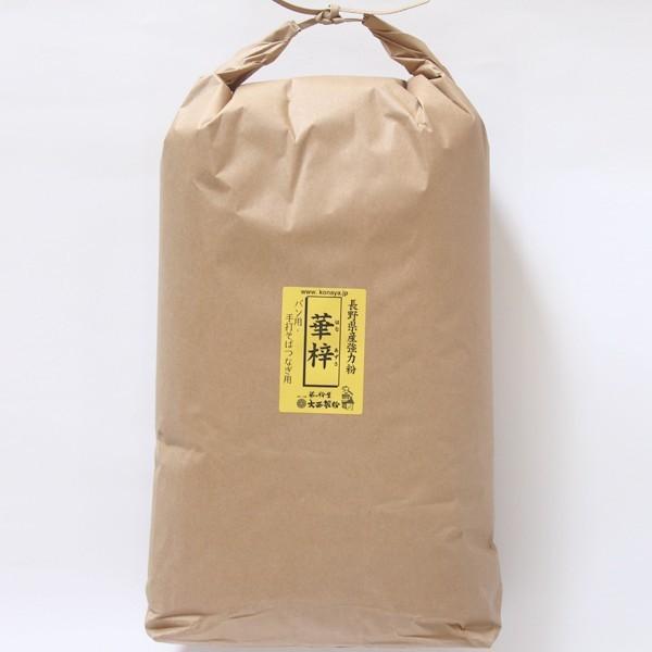 【業務用】長野県産小麦粉 華梓 (はなあずさ) 強力粉 10kg 国産小麦 小麦粉100% (hanaazusa10)