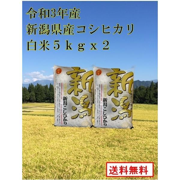 【新米 令和3年産 新潟県産 コシヒカリ 白米 10kg(5Kg×2袋)】 新潟県産 白米10kg コシヒカリ 送料無料