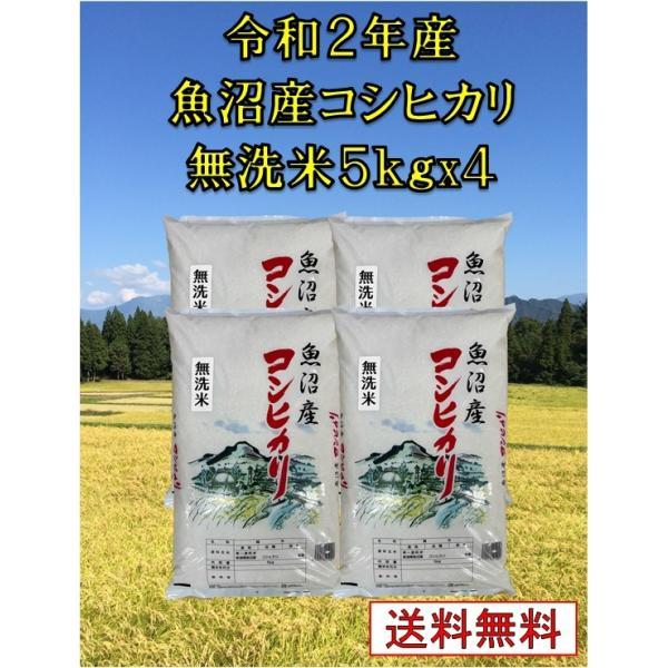 【魚沼産コシヒカリ 令和2年産 無洗米 20kg(5Kg×4袋)】 新潟県産 20kg 訳あり 2等米 コシヒカリ