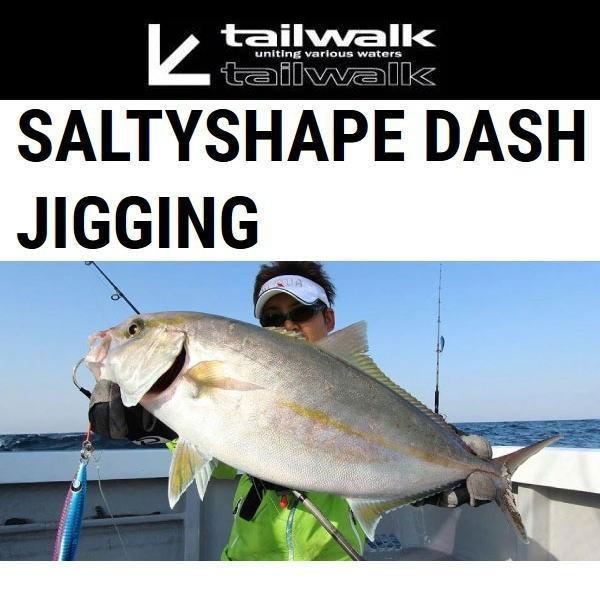 テイルウォーク ソルティシェイプ ダッシュ S63/180 ジギング|koshi-tackleisland