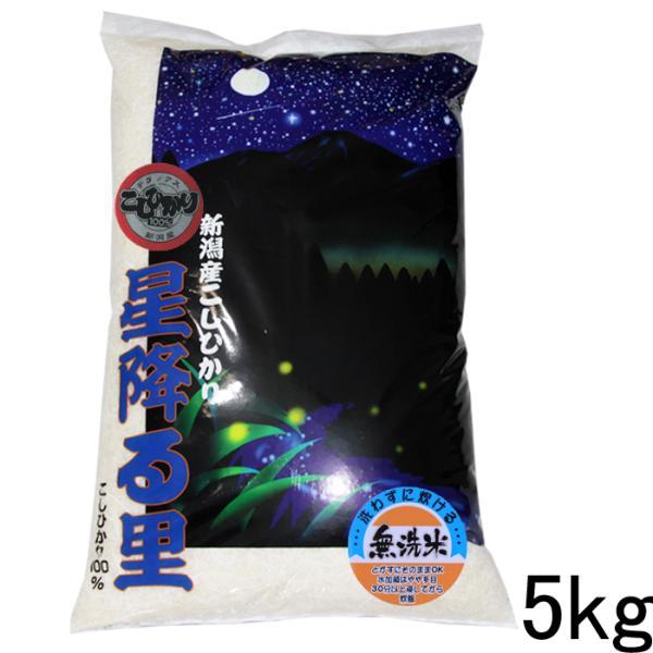 無洗米 5kg 新潟産 コシヒカリ 5kg 特A 無洗米 5キロ コシヒカリデラックス5kg 農家直送 無洗米5kg 令和2年 コシヒカリ 5キロ 無洗米 5キロ
