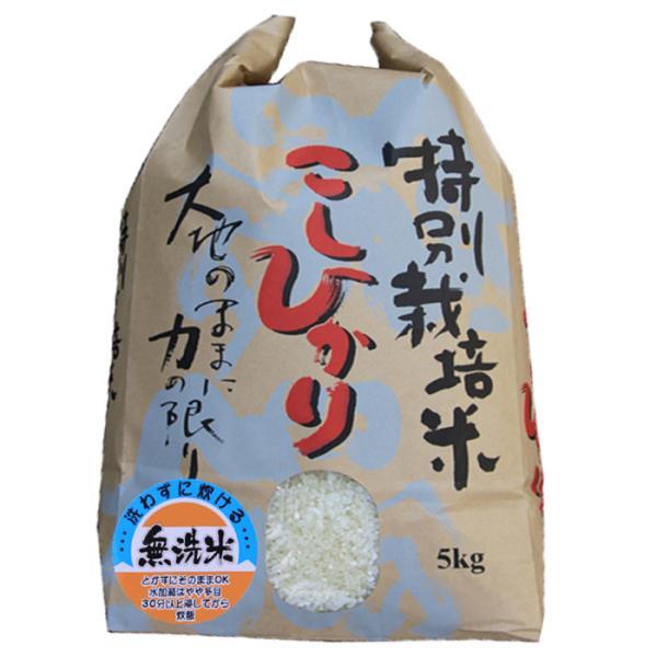 特A スーパーコシヒカリ5kg(無洗米)特別栽培米 コシヒカリ 令和2年 コシヒカリ5キロ 無洗米