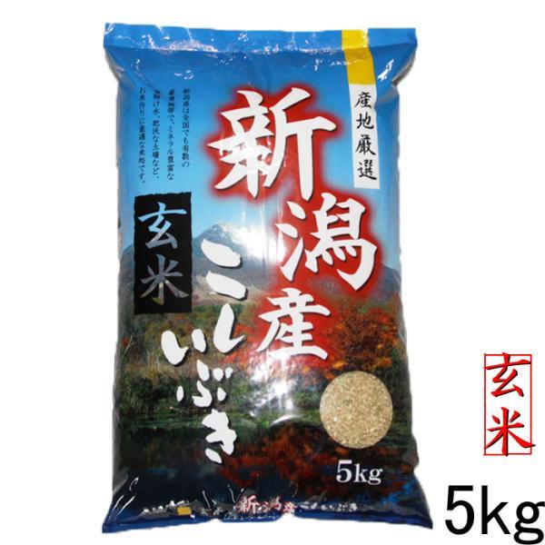 お米玄米5kg新潟産こしいぶき5kg(5kg×1袋)玄米5キロ農家直送令和2年お米5キロ玄米美味しいお米産地直送