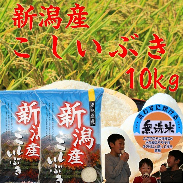 【無洗米 10kg】 新潟産 こしいぶき 10kg (5kg×2袋)  お米 令和2年 2020 美味しいお米 無洗米10kg 5kg×2袋 新潟県産