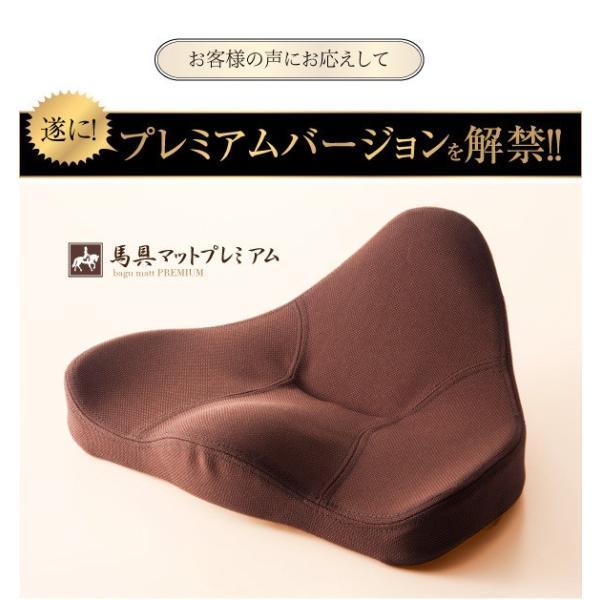 骨盤矯正 椅子 座椅子 腰痛 クッション 姿勢矯正 骨盤座椅子 馬具マットプレミアム|kotubanshop|02