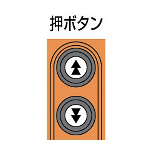 キトー セレクト 電気チェーンブロック 2速 100kg(ST)x3m ED10ST2219|kouei-sangyou|02