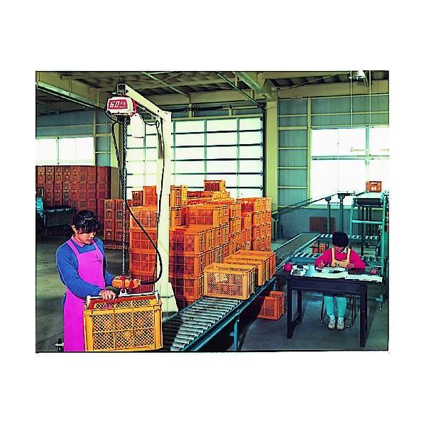 キトー セレクト 電気チェーンブロック 2速 100kg(ST)x3m ED10ST2219|kouei-sangyou|05