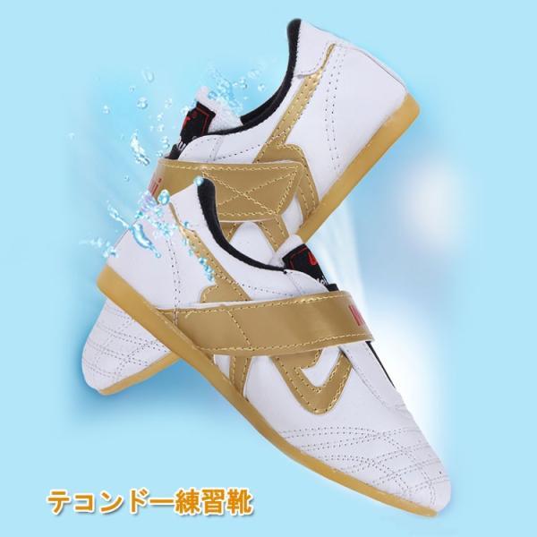 ボクシング / 道靴 / シューズ / スポーツ / トレーニング / ストレス解消/カンフーシューズ/ テコンドー練習靴