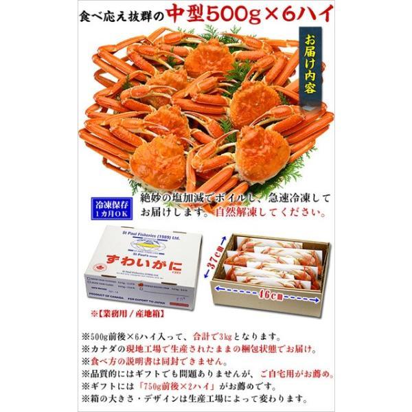 ズワイガニ カニ ボイルずわい蟹 姿3kg 500g前後×6尾入り 業務用 同梱不可 解凍半日ほど  ズワイガニ|kouragumi|03