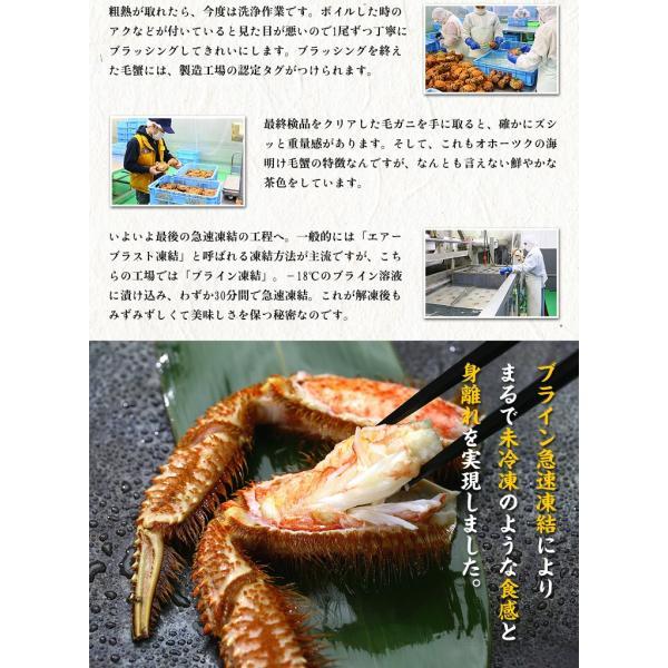 母の日 早割 かに カニ 蟹   特大 毛がに 姿 800g前後 ボイル  化粧箱 食べ方説明書付き |kouragumi|05