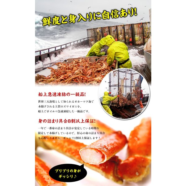 ズワイガニ カニ かに 蟹  訳あり ボイルずわいがに 足 3kg 食べ放題|kouragumi|04