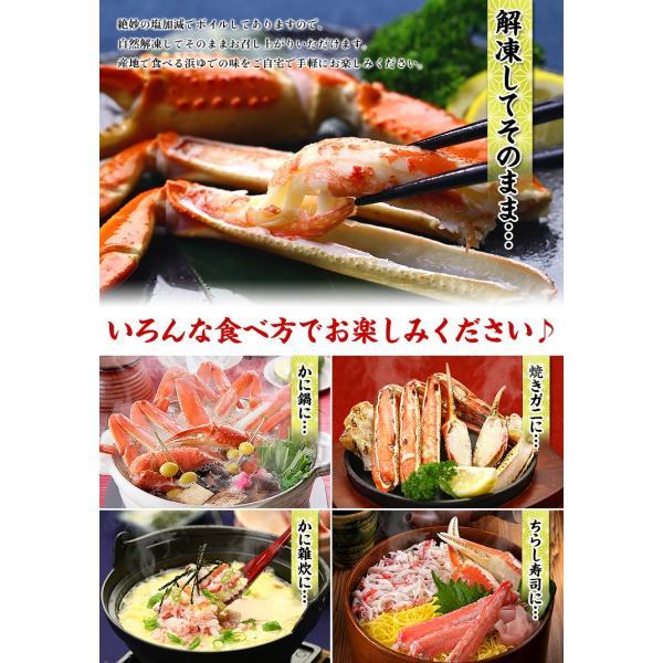ズワイガニ カニ かに 蟹  訳あり ボイルずわいがに 足 3kg 食べ放題|kouragumi|05