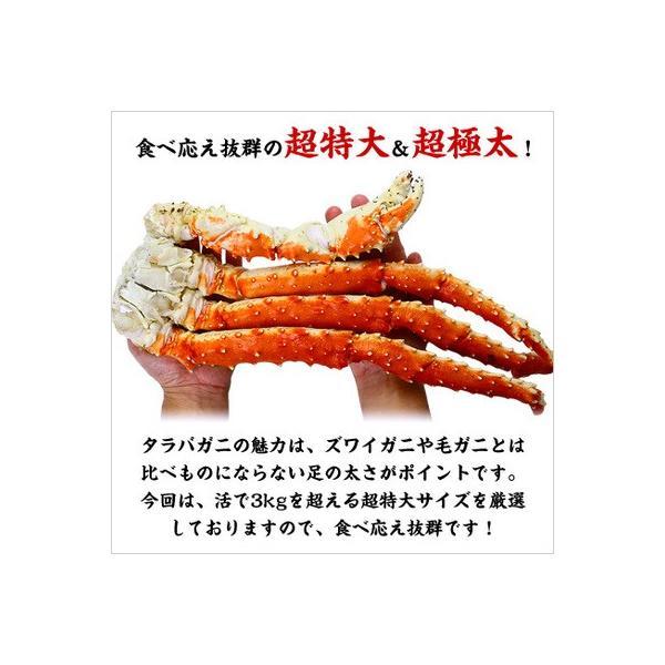 カニ かに 蟹 タラバガニ 超特大 超極太 たらばがに 足 1.5kg 1肩 シュリンク包装 送料無料 kouragumi 02