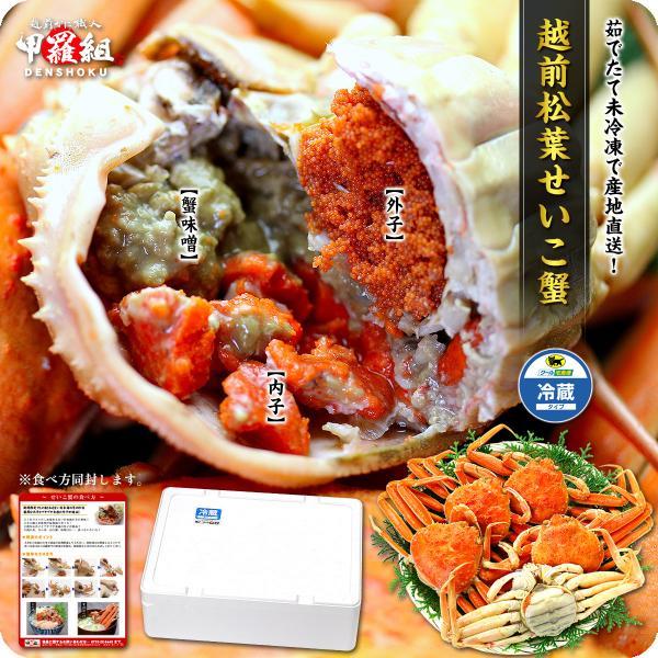 カニ せいこがに 茹でたて 未冷凍 越前 松葉 せいこ蟹 お試し小サイズ 6-7杯 2-3人前 同梱不可  ズワイガニ|kouragumi