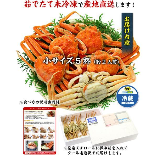 カニ せいこがに 茹でたて 未冷凍 越前 松葉 せいこ蟹 お試し小サイズ 6-7杯 2-3人前 同梱不可  ズワイガニ|kouragumi|02
