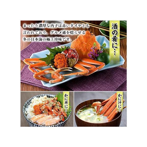 カニ せいこがに 茹でたて 未冷凍 越前 松葉 せいこ蟹 お試し小サイズ 6-7杯 2-3人前 同梱不可  ズワイガニ|kouragumi|03