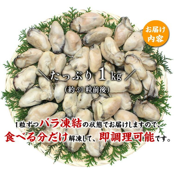 \最安値挑戦!1,999円送料無料/ (カキ 牡蠣)ジャンボ広島かき1kg(解凍後850g/30粒前後2Lサイズ 加熱用)送料無料|kouragumi|02