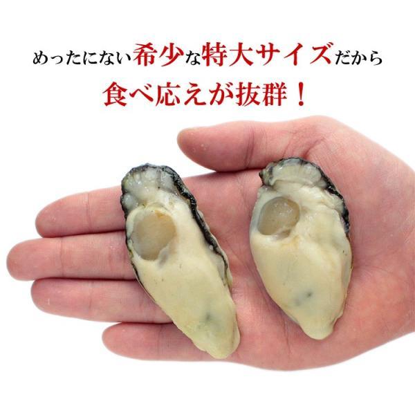 \最安値挑戦!1,999円送料無料/ (カキ 牡蠣)ジャンボ広島かき1kg(解凍後850g/30粒前後2Lサイズ 加熱用)送料無料|kouragumi|04
