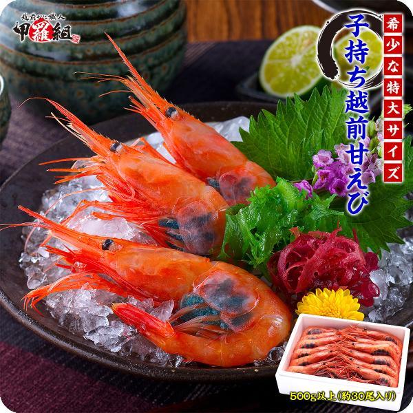 \只今半額セール開催中!/ 子持ち越前甘えび大サイズ500g(30尾前後)送料無料!|kouragumi