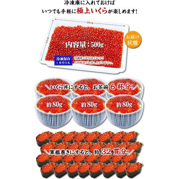 小粒 特選 鱒いくら醤油漬け 500g 約6人前|kouragumi|03
