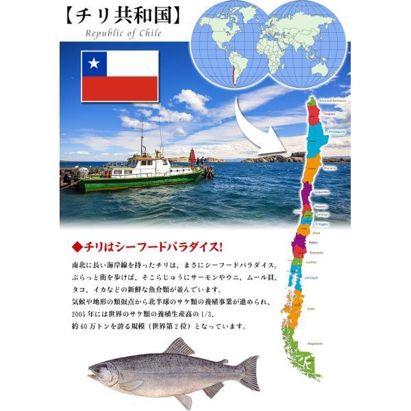 銀鮭 甘塩 半身フィーレ 丸ごと1枚(1kg前後)|kouragumi|04