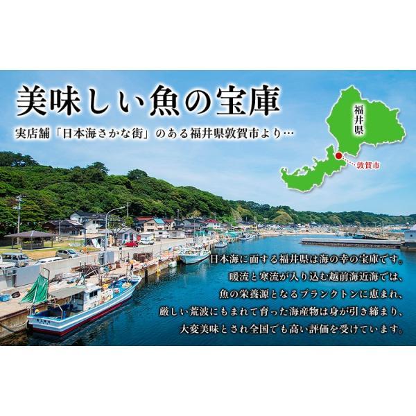 干物 セット 8種 詰め合わせ(若狭のぐじ、のどぐろ、金目鯛、縞ほっけ、とろさば、赤かれい、真いか、はたはた) kouragumi 02