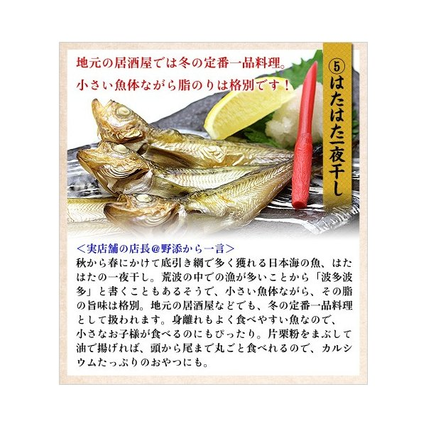 (干物 ひもの) 高級のどぐろ入り干物詰め合わせ5種セット(のどぐろ、縞ほっけ、とろさば、真いか、はたはた|kouragumi|07