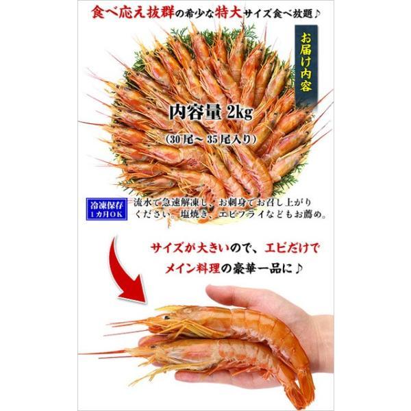 エビ 赤えび 特大サイズ 業務用 2kg(30〜35尾入り)赤エビ あかえび 送料無料|kouragumi|03