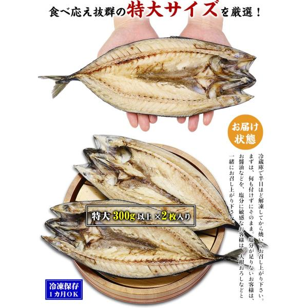 (干物)肉厚とろサバ開き×3枚入  |鯖・さば・サバ・一夜干し||kouragumi|02
