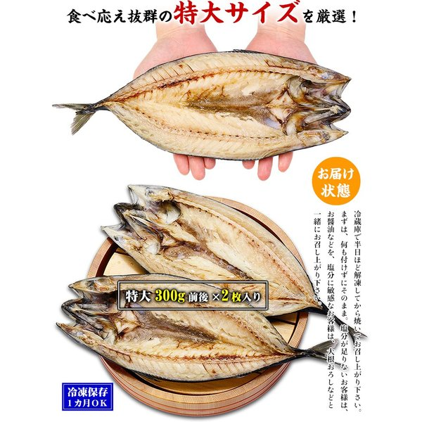 干物 肉厚 とろサバ 開き 特大サイズ 2枚入  鯖 さば サバ  一夜干し kouragumi 02