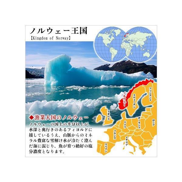 干物 肉厚 とろサバ 開き 特大サイズ 2枚入  鯖 さば サバ  一夜干し kouragumi 04
