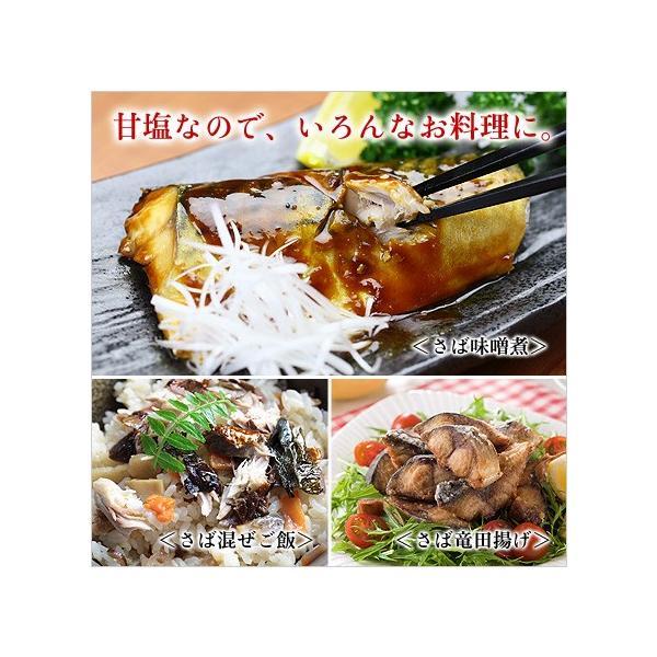 干物 肉厚 とろサバ 開き 特大サイズ 2枚入  鯖 さば サバ  一夜干し kouragumi 05