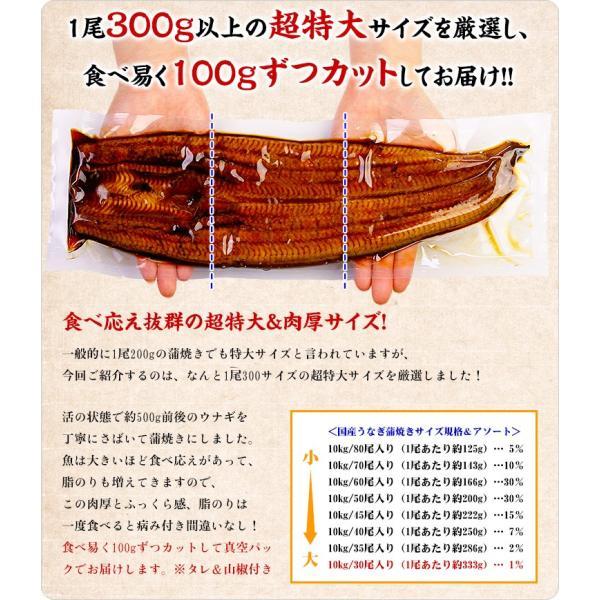 (うなぎ 鰻 ウナギ) 超特大 肉厚 カット うなぎ 蒲焼き 3食分 / 300g(100g×3枚入り) 国産うなぎの半値以下! まとめ買い割引クーポンあり|kouragumi|04