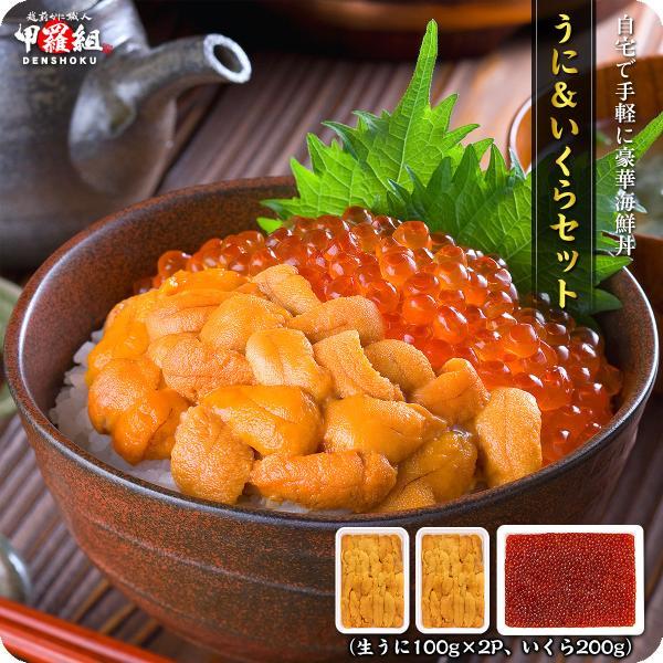(御中元 プレゼント ギフト) 無添加生うに&北海道完熟いくら醤油漬け贅沢セット[送料無料]約4人前 ウニ イクラ 雲丹 いくら|kouragumi